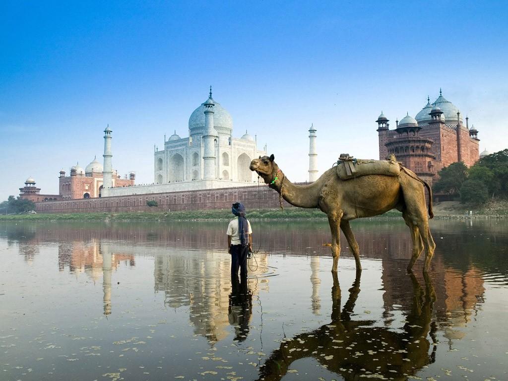 中谷美紀,インド旅行,ヨガ生活