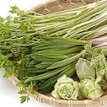 山菜の王様 シオデ シドケ タラの芽