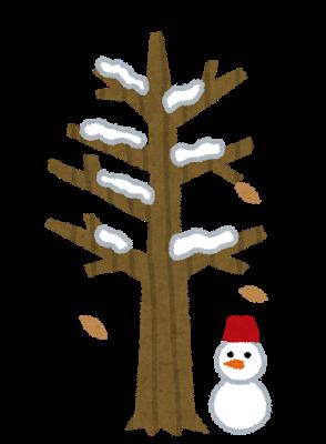 冬 枯れる 原因
