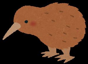 飛べない鳥 オーストラリア ニュージーランド
