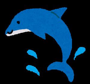 海豚 イルカ 漢字 意味 由来