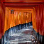 神道 仏教 違い 結婚式 葬儀