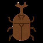 カブトムシ 飼育 幼虫 マット 交換