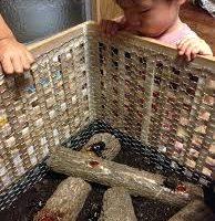 カブトムシ 飼育 方法