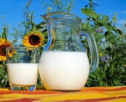 脂肪 牛乳 危険 低 【加工乳すごい】無脂肪・低脂肪・普通の牛乳の飲み比べ