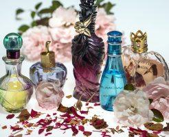 マルジェラ 香水 芸能人 人気 種類