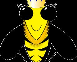 ミツバチ 女王蜂 選ばれ方
