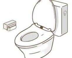 トイレ 虫 駆除