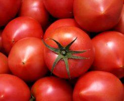 トマト 下痢 食べ過ぎ 血便
