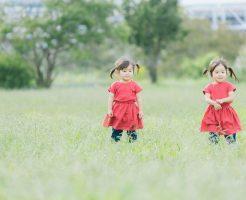 双子 芸能人 有名人 イケメン 兄弟 姉妹