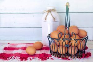 卵 消化 時間