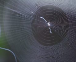 蜘蛛の巣 メイク 人気 ハロウィン 折り紙