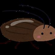 ゴキブリ 夢 意味
